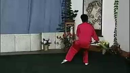 武当太极剑49式(04苏韧峰背向演示)