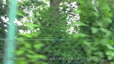 東京都港湾局・東京都港湾局専用線 (晴海線) 2018.8.2