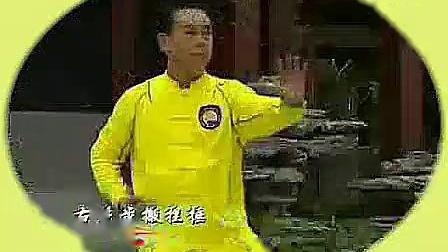 段位制杨式太极拳四段单练套路_标清