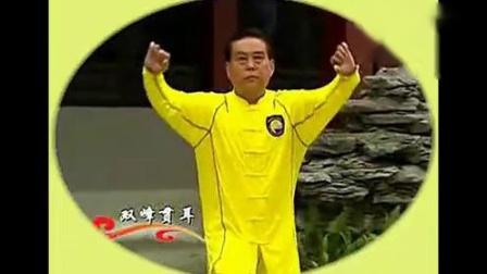 赵幼斌大师演练段位制杨式太极拳五段单练套路_标清