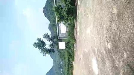 广西 南宁市 平果县 新安镇 大龙村