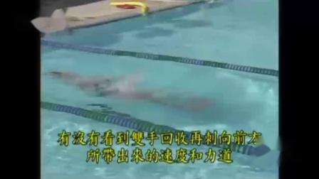轻松的鱼式游泳-蛙泳