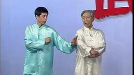 37式杨氏太极拳全套拆解教学(张鸿诚)_标清