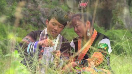 苗族电影《虎妻》主题曲片段