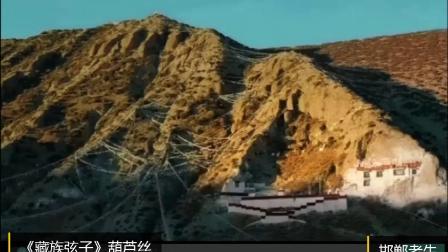 藏族弦子--邯郸老牛
