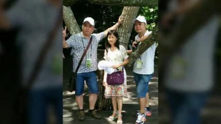 海南万宁东岭农场88屇聚会满满的回忆