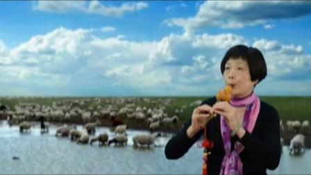 葫芦丝吹奏《马兰花》(蒋兆敏)