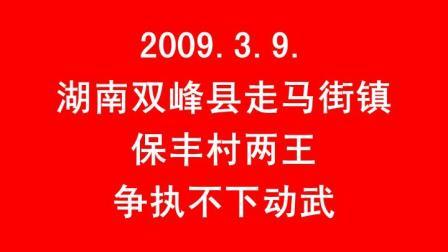 2009.3.9.湖南双峰县走马街镇保丰村两王之争和为贵