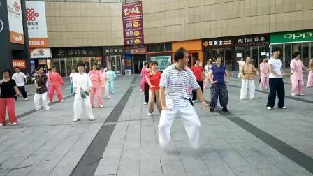 85式杨式太极拳教学1-5 梅逸太极園