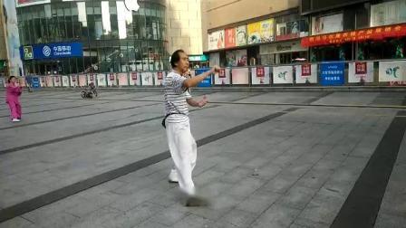 85式杨式太极拳教学.24-30 梅逸太极園