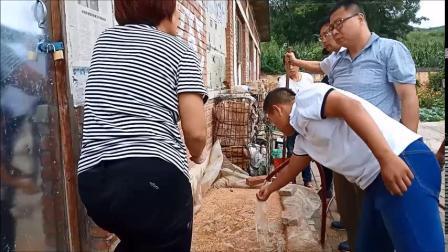 贾乾义羊肚菌培训学校现场