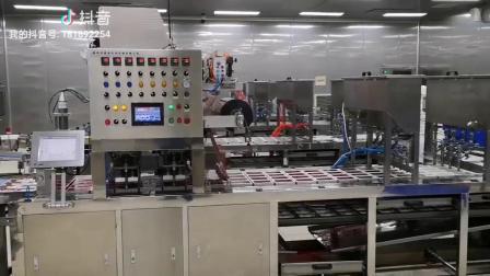 常州骆马湖食品有限公司智能化工厂