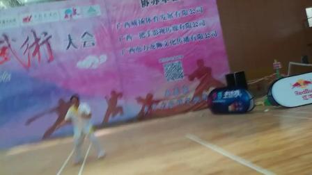 第十届中国~东盟(南宁)武术大会咏春拳卓嘉诚