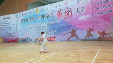第十届中国~东盟(南宁)市武术大会侠拳卓嘉诚