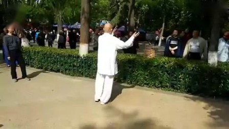 郑琛大师西安莲湖公园太极拳2018年4月21日_标清(1)