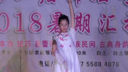 艺星舞蹈第二届专场演出 少儿舞蹈 古典舞 独舞《离人愁》