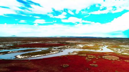 红色的贡格尔草原这是怎么滴了
