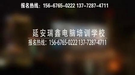 延安瑞鑫电脑培训学校宣传片