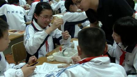 華師大版科學八上5.1《食物的消化與吸收》課堂實錄教學視頻-焦越