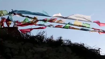 张韶涵献唱一首《复活节》百听不厌