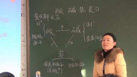 華師大版科學九上第一章《酸堿鹽》復習課 課堂教學視頻實錄-王質潔