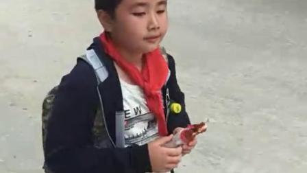 可爱儿子杨科(三年级上)