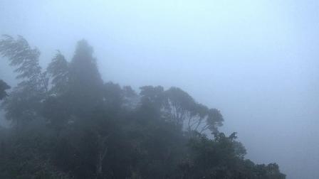 Sheep拍摄风光 太姥山[1]云里雾里[5倍速]