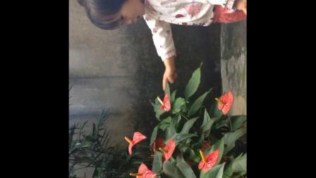 Vivi的快乐成长0-4岁