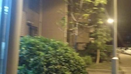 video_201狂风吹过我值班的保安亭。80916_025453