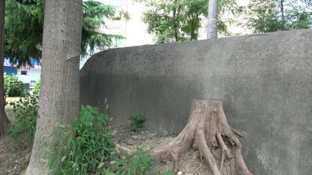 嘉善阻击战城东张家桥碉堡遗址