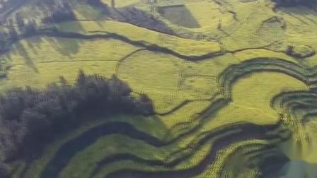 """罗平是位于滇、黔、桂三省交界处的小城,素有""""鸡鸣三省""""的美誉,行政区划属于云南省曲靖市。"""