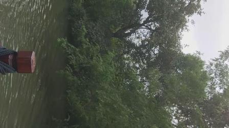 乘船游西溪湿地