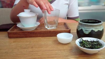 [今天你喝了没】福鼎白茶vs政和白茶_高清_1