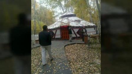 哈巴河县白桦林风景区