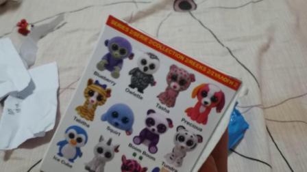 大眼睛ty企鹅冰冰盲盒玩具