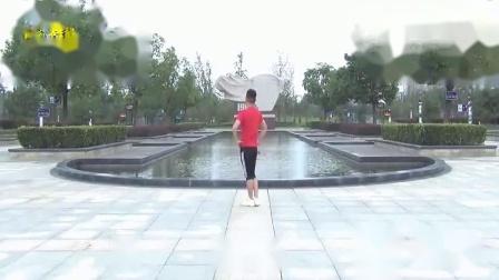 楠楠广场舞爱拼才会赢背面