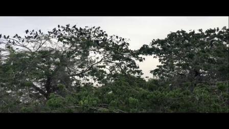 斯里兰卡猎奇之旅