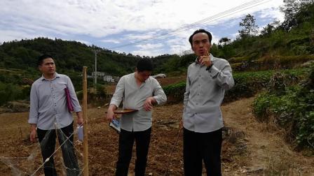 何为风水宝地?风水大师王炳程实地寻龙点穴,讲解农村阳宅住房视频