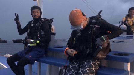 菲律宾妈妈岛观鲨之旅