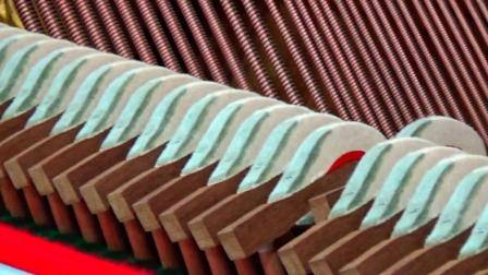瓦斯特里亚独立定弦乌木黑键德国钢板