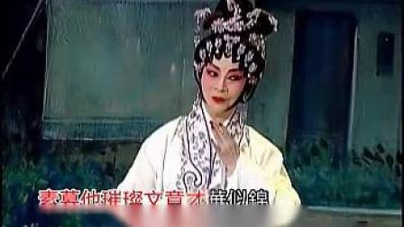 紫钗缘  黎佩仪 彭枳权