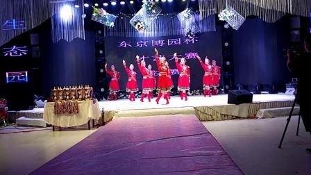 青叶舞蹈队11《鸿雁》10人版