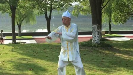 马爱群大师演练化龙拳