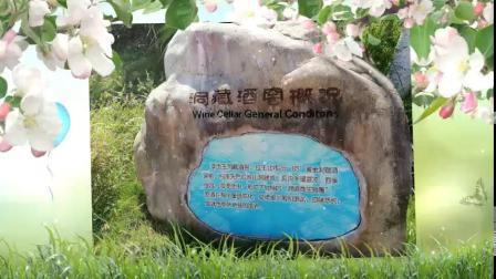 赣州经开区工业游启动仪式