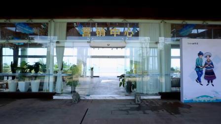 海南 - 世贸怒放海 样板房视频