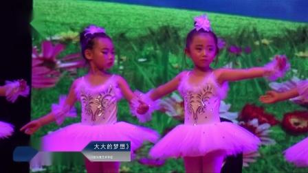 """艺术校园—2018""""小荷花""""宁夏地区《小小的我大大的梦想》灵武爱尚舞艺术学校"""