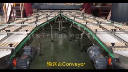 必硕科技——全自动高产能四面转鼓机蛋托生产线