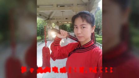 李国强弟子太极七仙女武当新龙形剑分段习练