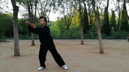 张金华老师演练传统吴氏太极拳108式