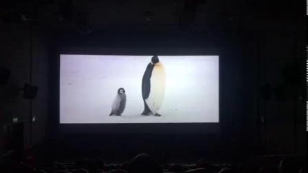 """陪小朋友二刷《帝企鹅日记2》满场的小朋友高声大喊企鹅宝宝!!企鹅宝宝!!我旁边一个小朋友说:""""妈妈你给我买一只回家好吗?!""""哈哈哈哈哈哈哈哈,当妈的拿着手机拍照"""